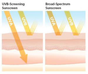 UV ray penetration and sunblock